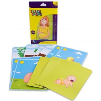 Flash Cards Secuencia...